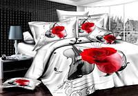Комплект постельного белья ARYA сатин Violin
