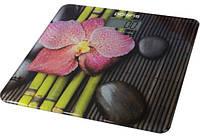 Напольные весы 180 кг Орхидея Polaris PWS 1832DG