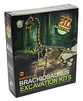 """Раскопки 503 """"Динозавры"""""""