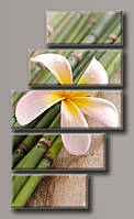 "Модульная картина на холсте из 5-ти частей ""Цветок на тростнике"""