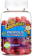The Gummies Co. Propolis & Echinacea 100 gummy bears
