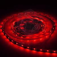 Светодиодная лента SMD3528 - красная, 60 светодиодов/м, 12 В DC, 1 м, IP65