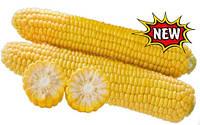 Семена кукурузы 1010 F1 25 000 сем. Lark seeds.