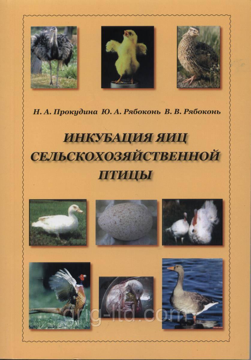 """Книга """"Инкубация яиц сельскохозяйственной птицы"""""""