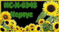 Гибрид подсолнечника НС-Х-6343 (элит), (толерантный к евролайтингу)  - Нертус