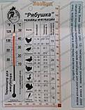 Инкубатор Рябушка (150 яиц механический, цифровой), фото 7