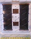Інкубатор Рябушка автомат 150 яєць, фото 3