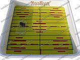 Інкубатор Рябушка автомат 150 яєць, фото 9