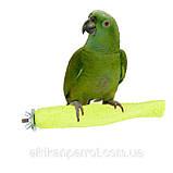 Присада - пенза для попугая очень прочная, фото 2