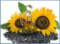 Семена подсолнечника Сур (сорт) семечки подсолнуха насіння соняшнику семена соняшника семена подсолнуха
