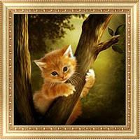 Котенок на дереве (частичная выкладка)