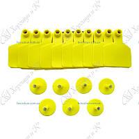 Ушная бирка безномерная желтая 70*58 мм