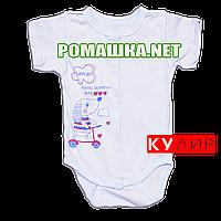 Детский боди-футболка р. 56 ткань КУЛИР 100% тонкий хлопок ТМ Алекс 3087 Голубой-3
