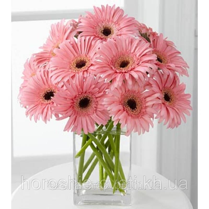 Цена на живые цветы в харькове где купить цветы для сада дешево в москве форум
