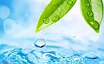 Преимущество водоочистки электроактиваторов воды Эковод перед существующими водоочистителями