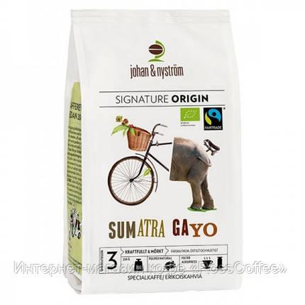 Кофе в зернах Johan&Nyström Sumatra Gayo Mountain Fairtrade 250 г, фото 2