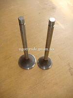 Клапан впускной/ выпускной СМД, А05.12.012 А05.12.013