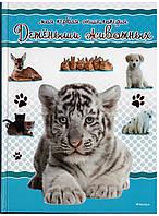 Книга. Моя первая энциклопедия. Детёныши животных. Издательство Махаон (Machon)
