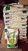 Семена подсолнечника Старобельский, экстра фракция, 102-105 дней