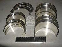 Вкладыши коренные Р1 Д 440 АО20-1 (Производство ЗПС, г.Тамбов) А23.01-116-440сб