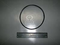 Кольцо уплотнительное на гильзу Д 240 (Производство Украина) 50-1002022-01