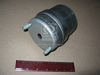 Подушка двигателя VOLKSWAGEN TRANSPORTER IV (производство Lemferder) (арт. 25369 01), AGHZX