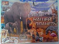 Игра настольная Викторина Животные нашей планеты Danko-Toys Украина