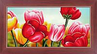 """Наборы для рисования камнями 5D (частичная выкладка на холсте) """"Тюльпаны"""" LasKo"""