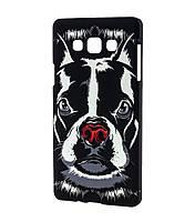 Чехол для Samsung Galaxy A3 (A300) Luxo Face neon собака