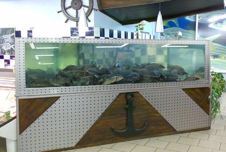 Торговые аквариумы