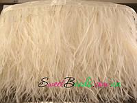 Страусиные перья на ленте, молочный белый