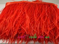 Страусиные перья на ленте, красный