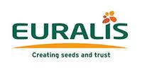 Новинка Евралис Семанс - семена подсолнечника ЕС ЯНИС засухоустойчив + устойчивость к семи расам заразихи A-G