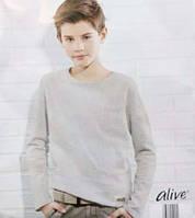 Отличный модный реглан для Вашего мальчика Alive Германия 152 рост, фото 1