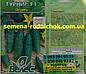 Огурец Буян F1 ранний партенокарпический пучковой корнишоный гибрид плодоносит до осени (10 сем.), фото 2