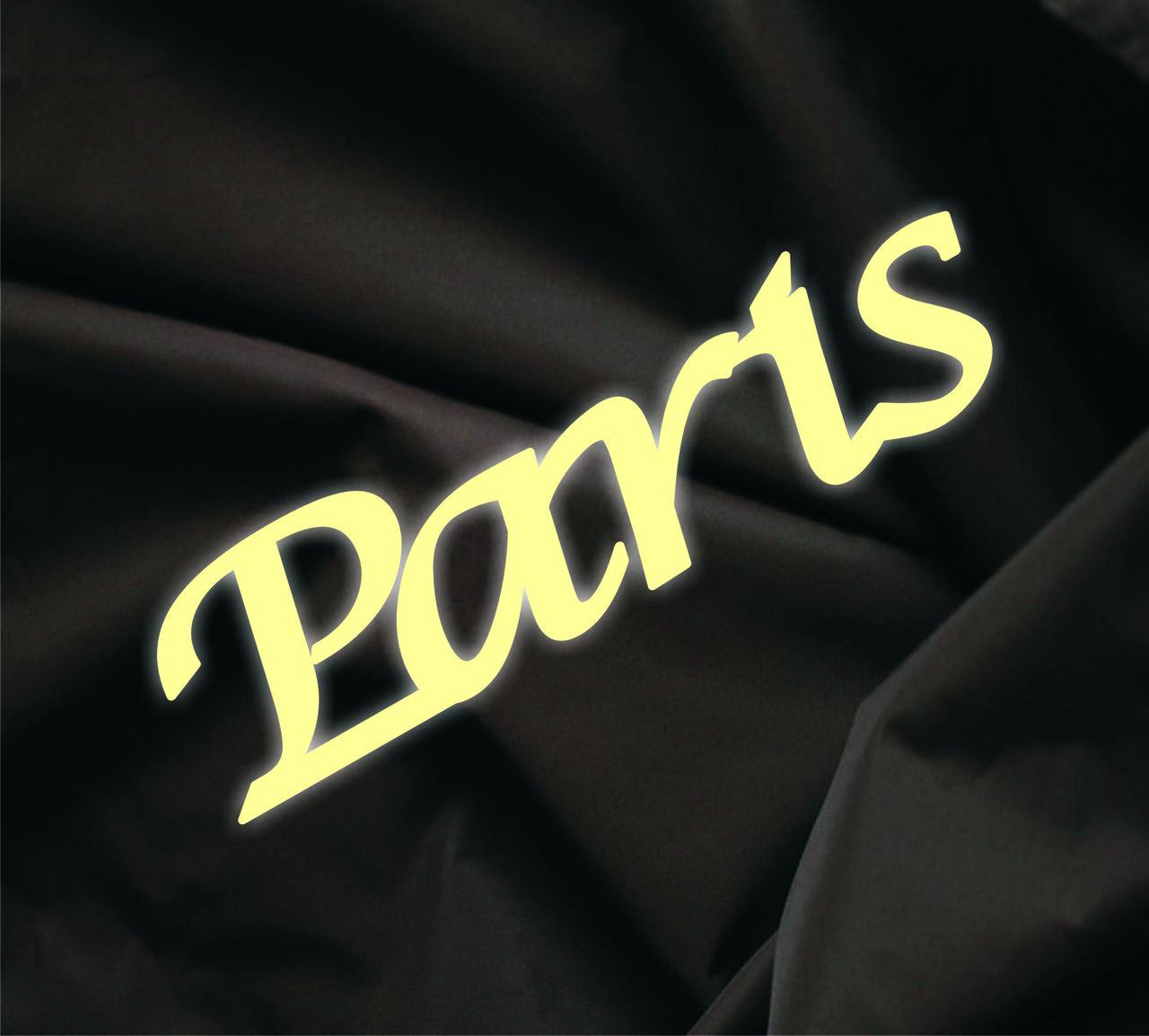 Объемная надпись Paris