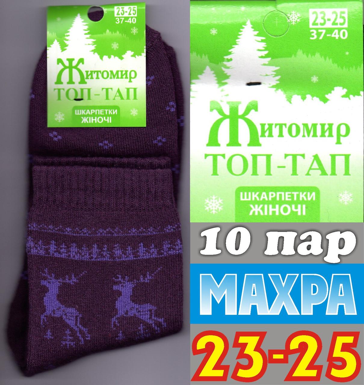 Женские носки махра зимние ТОП-ТАП Житомир Украина 23-25 размер с фиолетовым  оленем  НЖЗ-01372