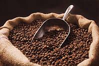 Кофе свежеобжаренный Робуста Grade 1 Страна: Вьетнам Размер (скрин): 18-20 вес: 250 гр