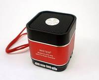 Портативная MP3 Колонка WS 360 Спикер USB FM am, фото 1