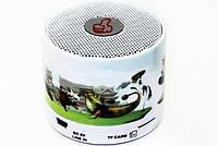 Беспроводная MP3 Колонка C 101 USB am, фото 1