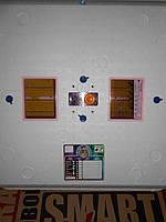 """Инкубатор Рябушка """"Smart plus""""-150 с мех. переворотом и аналогов терморегулятором и инфракрасным обогревателем, фото 1"""