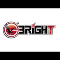 Модель балансировочного станка BRIGHT