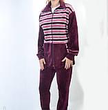 Женский велюровый костюм  в полоску 54-18, фото 2