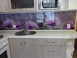 """Кухонный фартук из стекла """"цветы фиолетовой диморфотеки"""" в Днепре 2"""