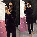 Женский модный велюровый повседневный костюм (2 цвета), фото 4