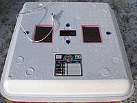 Инкубатор с автоматическим переворотом для гусиных яиц Рябушка 2 - 80 Smart Plus