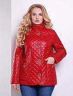 Женские весенние куртки больших размеров