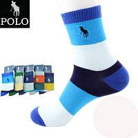Носки Мужские спортивные хлопок POLO (Поло) высокие