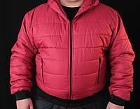 Куртки стеганые мужские, фото 1