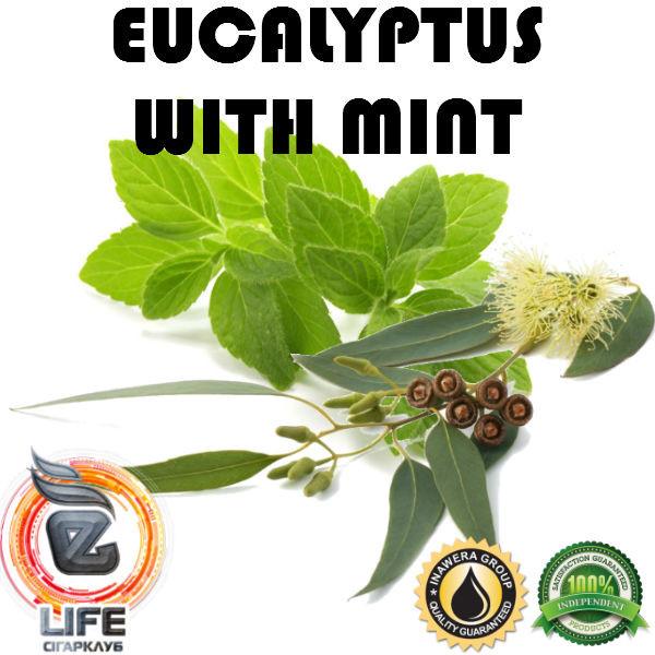 Ароматизатор Inawera EUCALYPTUS WITH MINT (Эвкалипт с мятой)
